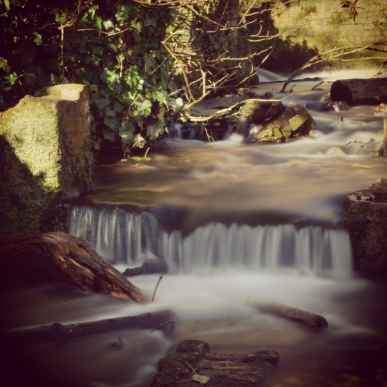 Waterfall at Kearney Abbey near Dover, Kent